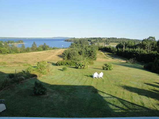 Gray Gables Bed and Breakfast: Backyard view from Mermaid room