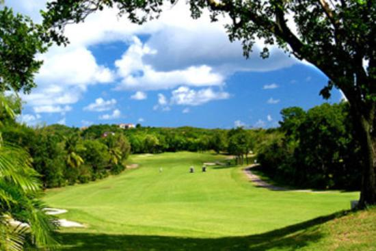 Golf Course Fairway Picture Of Alta Vista Golf Country Club Cebu City Tripadvisor