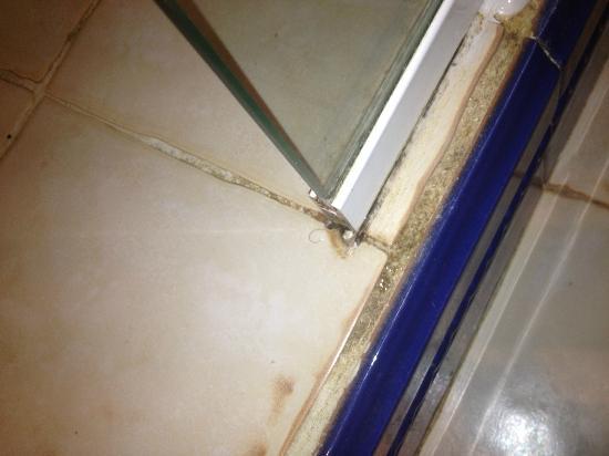 Hotel La Posada: Sucio, se ve los pelos