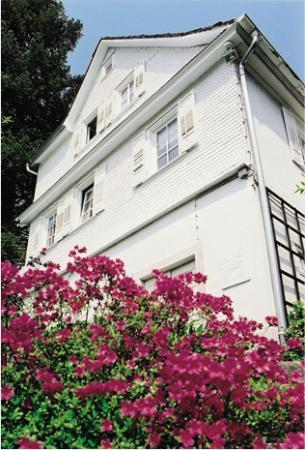 Foto de Brahms House