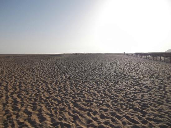 Bungalows Garden Beach: salt flats