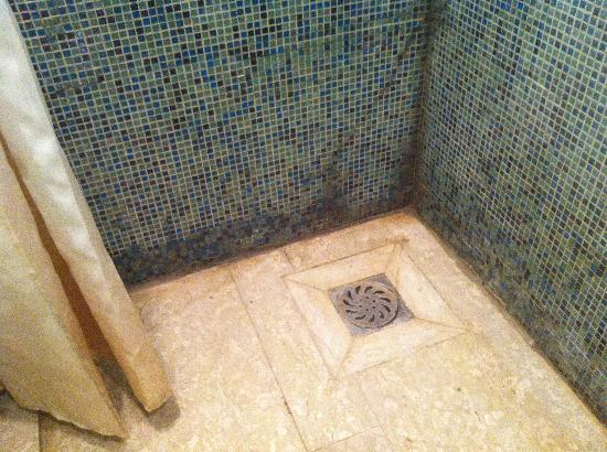 Seasons Park Ruizhi Service Apartment : Shower mold - yes that is a white shower curtain!