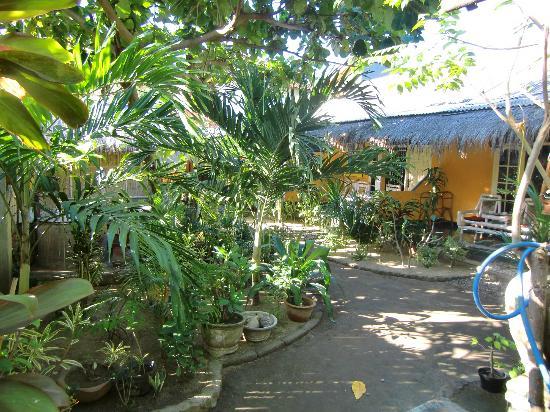 Rumah Kundun: the garden
