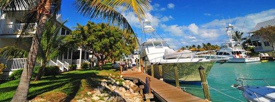 Hawks Cay Marina Dockside Store