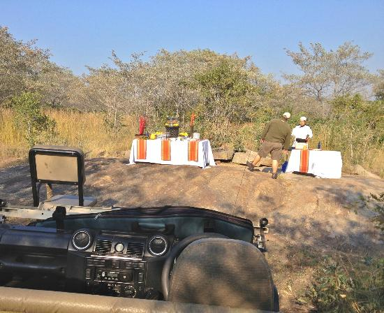 Ulusaba Private Game Lodge: A morning game drive break of Champagne and freshly made pancakes