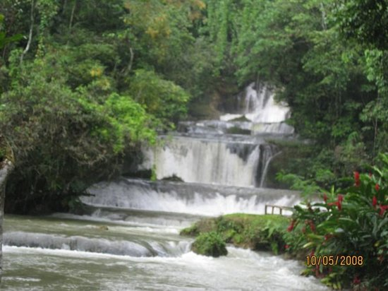 Kenneth's Jamaican Dream Vacation - Tours
