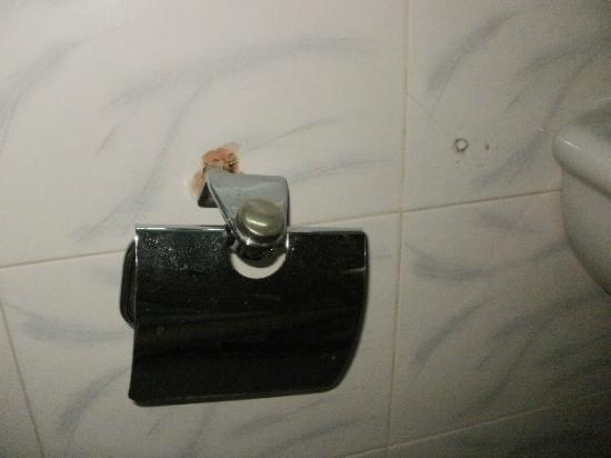 Luna Hotel: Toilettenpapierhalter