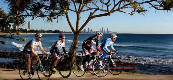 Gold Coast Cycling Day Tours