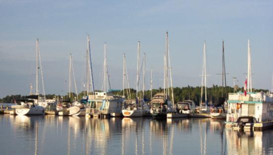 Municipal Marina Foto
