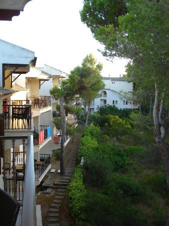 Es Baulo Petit Hotel: Pinada