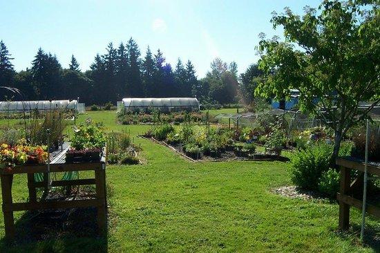 Secret Garden Growers