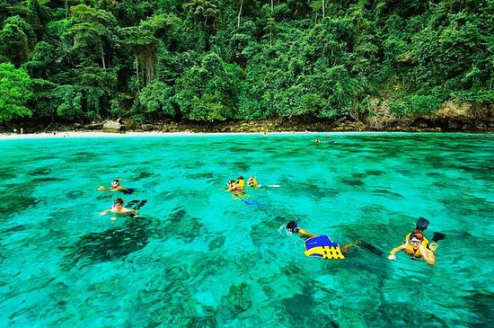 Phuket Absolute Marine : snorkeling @ PhiPhi Island