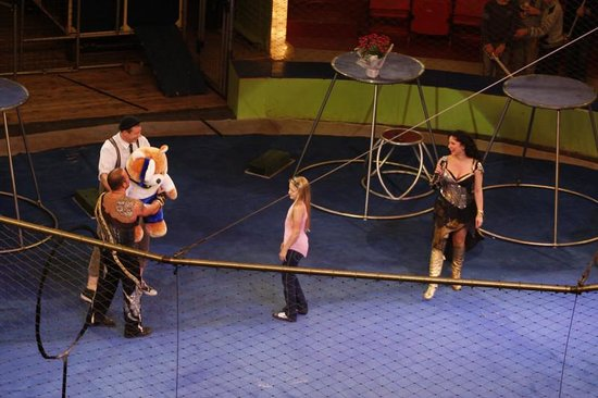 Museum of Circus Arts