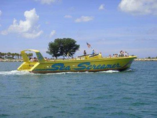 Sea Screamer Photo