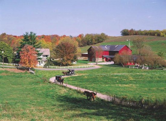 Best Restaurants In Ohio Amish Country