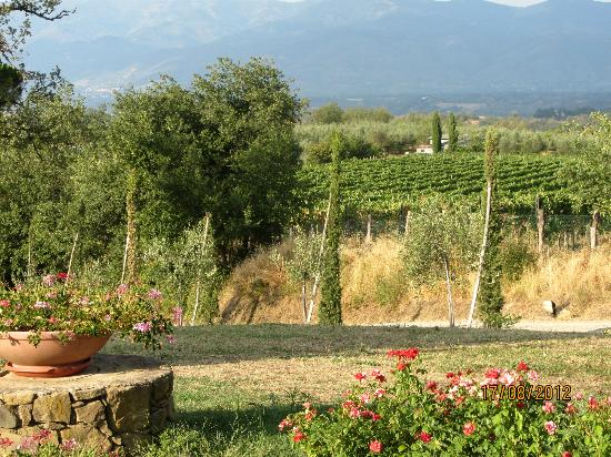 Agriturismo Relais Campiglioni: view from the garden
