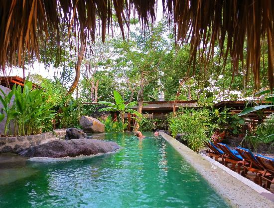 جيكارو أيلاند إكولودج: view of the lovely saltwater pool...looking toward dining area 
