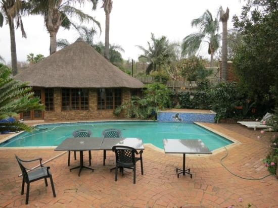 Bay Tree Guest House: The pool area.