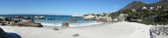 Grosvenor Guest  House: Boulders Beach and Penguin Colony
