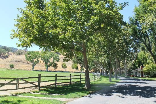 Alisal Guest Ranch & Resort: Near the entrance to the ranch