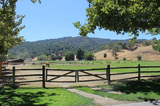 أليسال جست رانش آند ريزورت: ranch