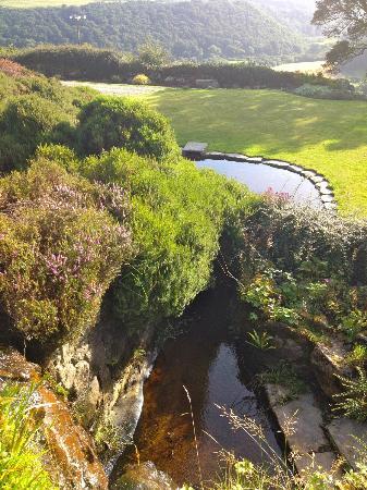 Ffald-y-Brenin Retreat: View from chapel