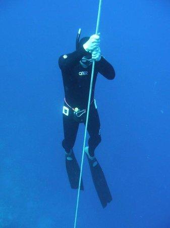 Freedive Ireland