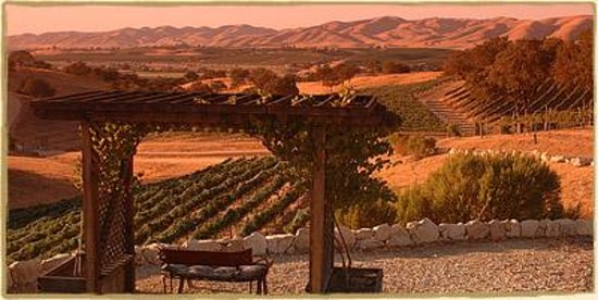 RN Estate Vineyard and Winery Photo