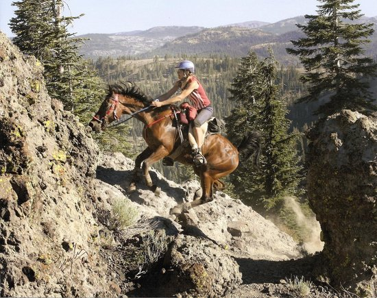 riding in the Granite Chief Wilderness
