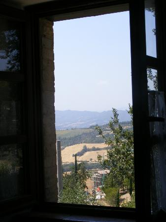Agriturismo Ampugnano: Dalla finestra...