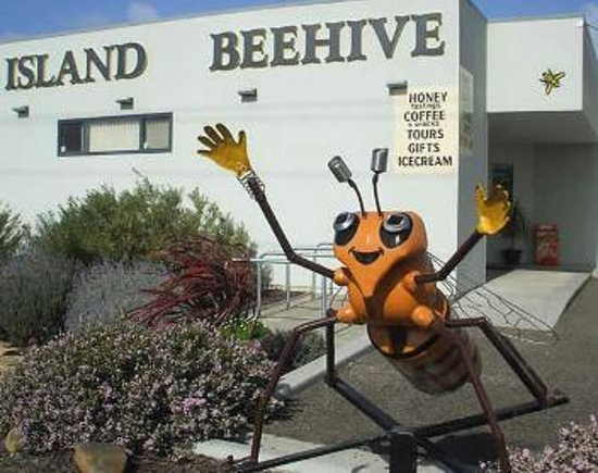 Island Beehive: The old Beehive
