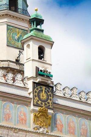 Zdjęcie Koziołki Poznańskie