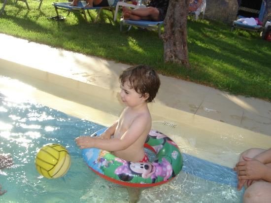 Olive Tree Apartments : Children in our pool !