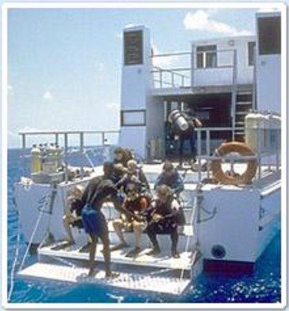 Stella Maris Resort Club Scuba Diving Photo