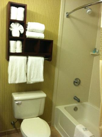 ‪هامبتون إن بوستون/بيبودي: Hampton Inn Boston Peabody Towels & Shower