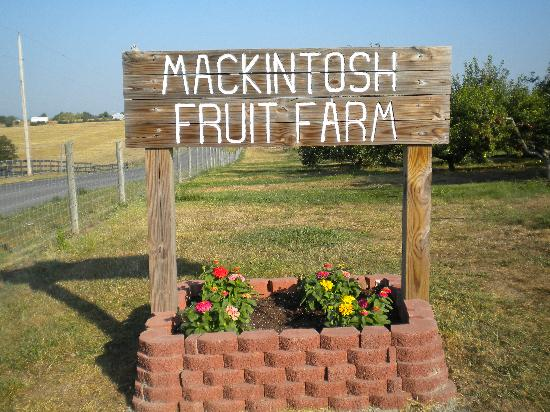 Mackintosh Fruit Farm Foto