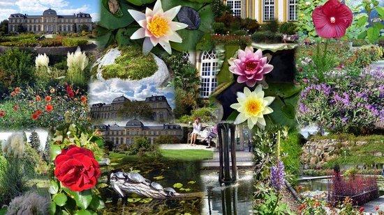 Bonn Botanic Garden