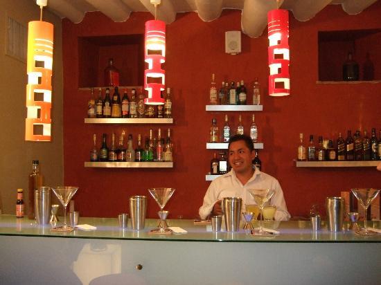 Casa Cartagena Boutique Hotel & Spa: Amazing Pisco Sour Class!