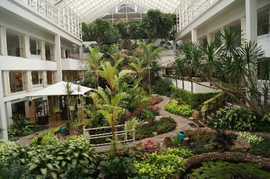 Charming Dusit Thani Pattaya: Hotel Inner Garden