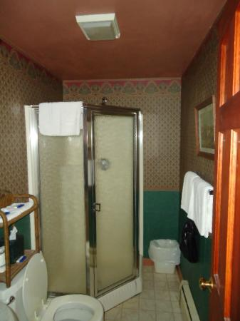 Yellow Monkey Guest Houses & Motel: Bathroom -- simple but clean and everything worked