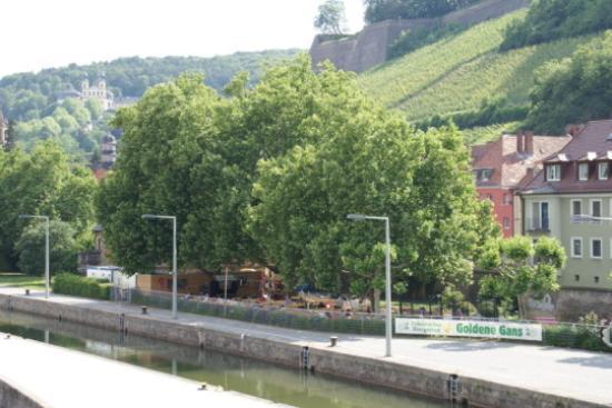 Goldene Gans - Fränkischer Biergarten Bild