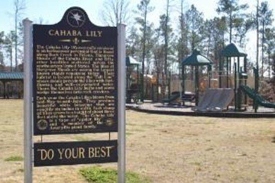 Cahaba Lilly Park
