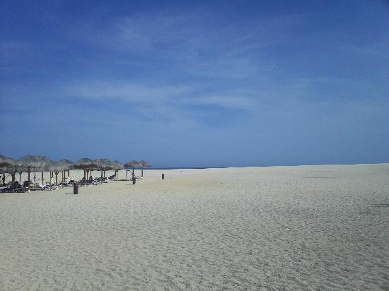 Paradisus Los Cabos : Huge beach area; long walk to beach!