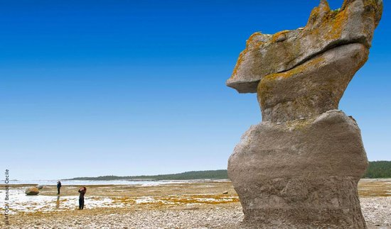 Coastal trails at rimouski river quebec top tips before for National rimouski