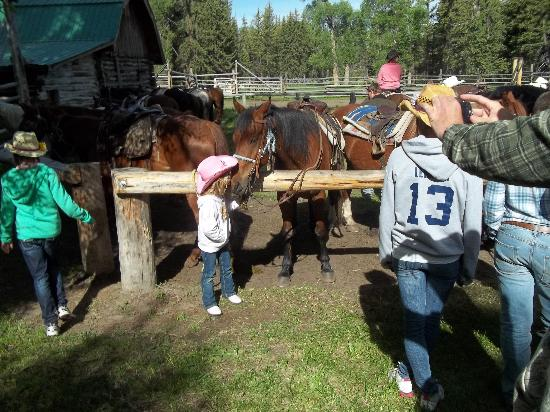 Moose Head Ranch: Abby loves her horse