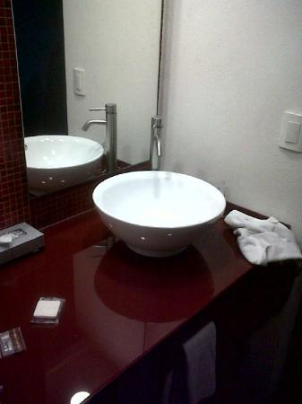 Fiesta Inn Leon : Bathroom