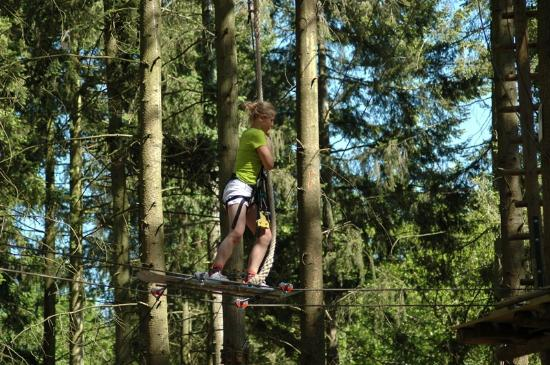 Andover, UK: Getting about however you can in the trees