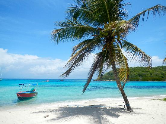 Simply Carriacou Island Tours: Relaxing in the Cays - the Lambi Queen tied to a palm