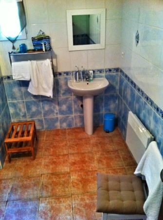 Le Mas de l'ile : bathroom