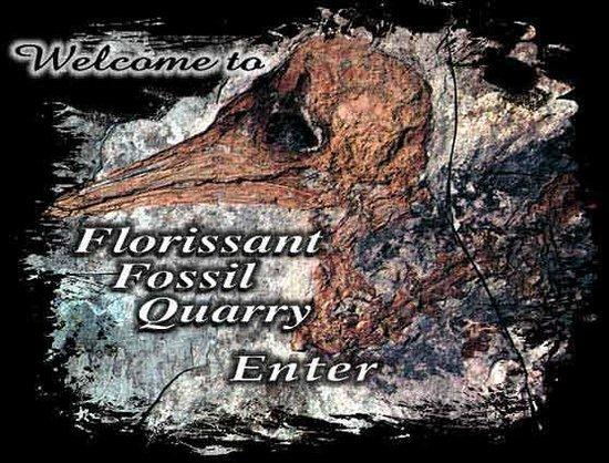 Foto de Florissant Fossil Quarry